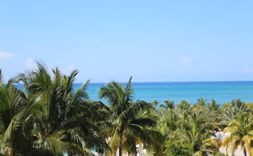 What to Expect in theBahamas